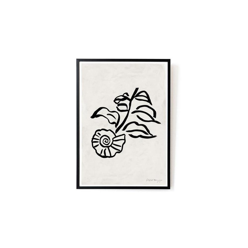 Plakat When a shell was a flower art print A3 HOTEL MAGIQUE