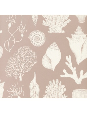 Tapeta Katie Scott Wallpaper - Shells Rose FERM LIVING