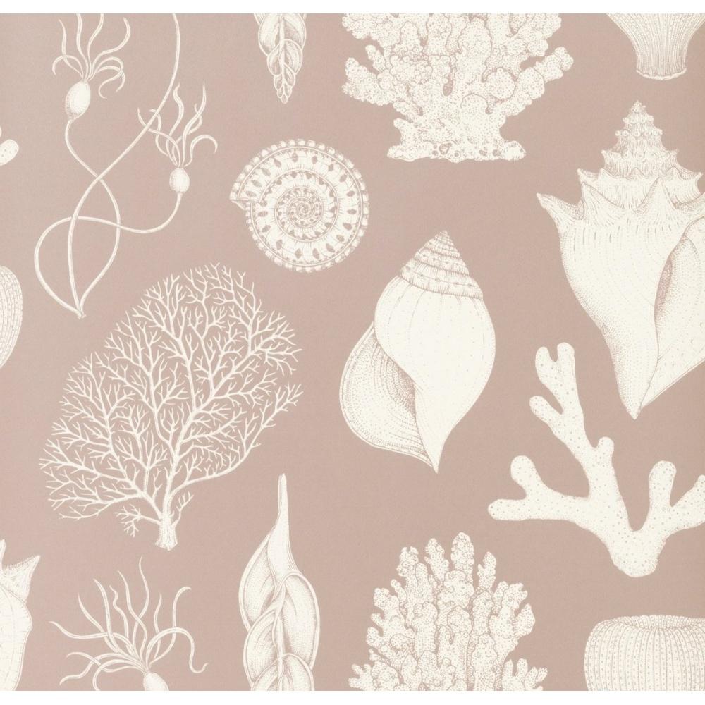 Tapeta Katie Scott Wallpaper - Shells Rose FERM LIVING