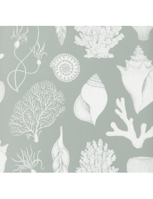 Tapeta Katie Scott Wallpaper - Shells FERM LIVING
