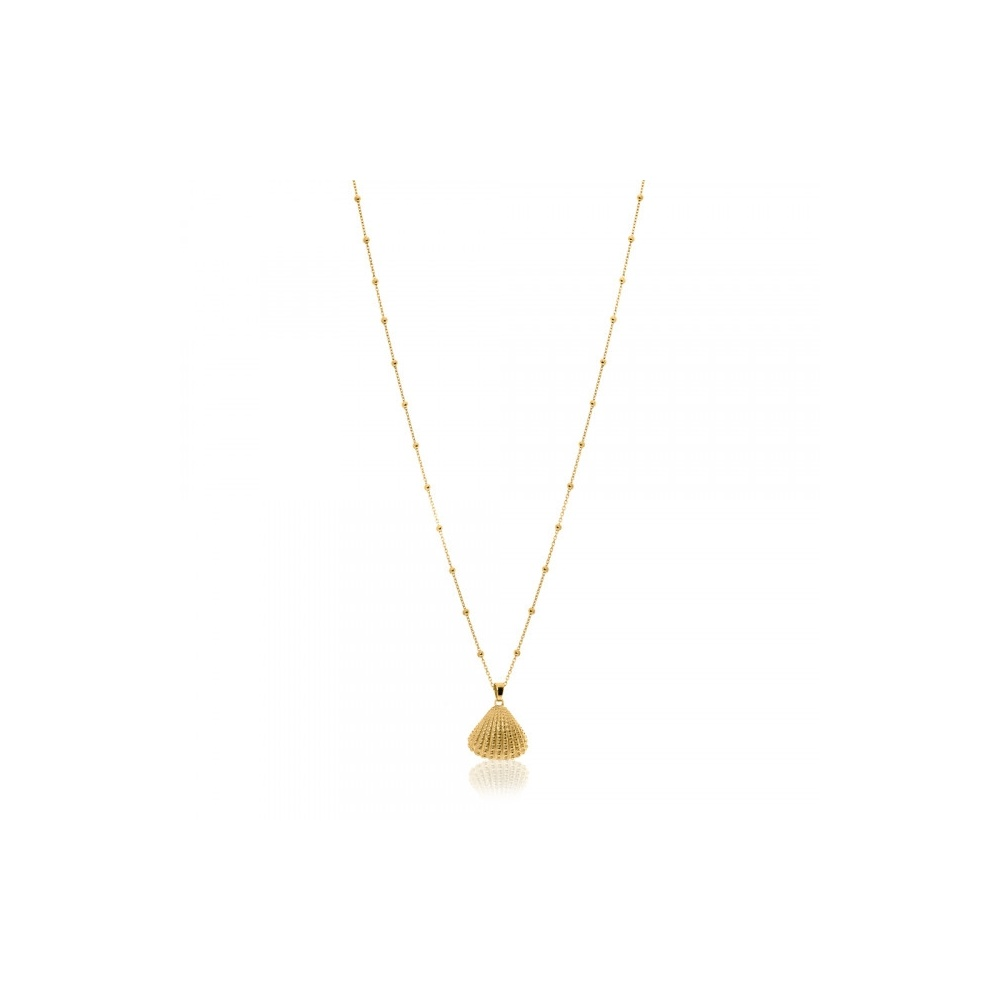SHELL NECKLACE GOLD WISHBONE